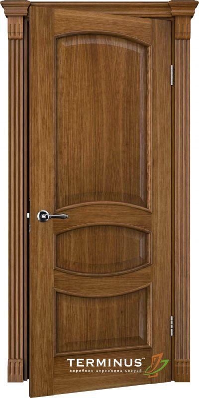 Двері міжкімнатні Terminus Caro 50 ПГ дуб даймонд