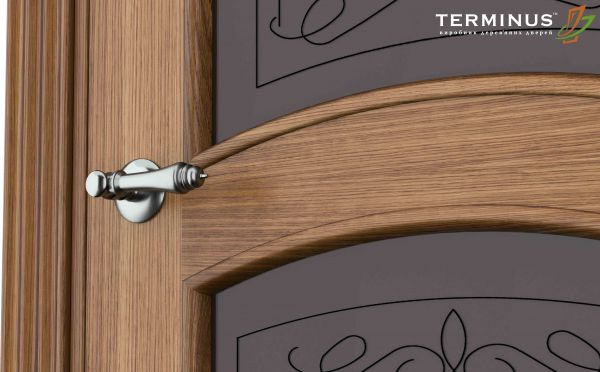 Двері міжкімнатні Terminus Caro 50 ПО дуб даймонд